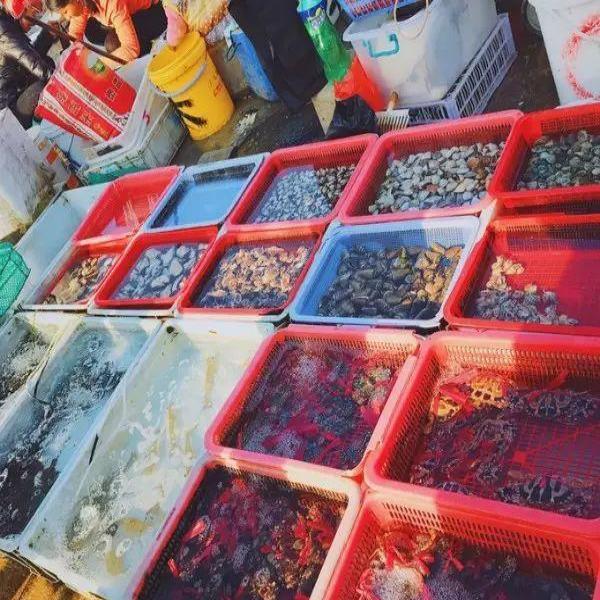 你还能开车到霞涌海鲜市场买菜做饭